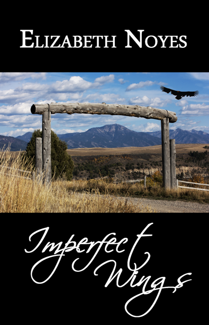 Imperfect Wings front cover FINAL