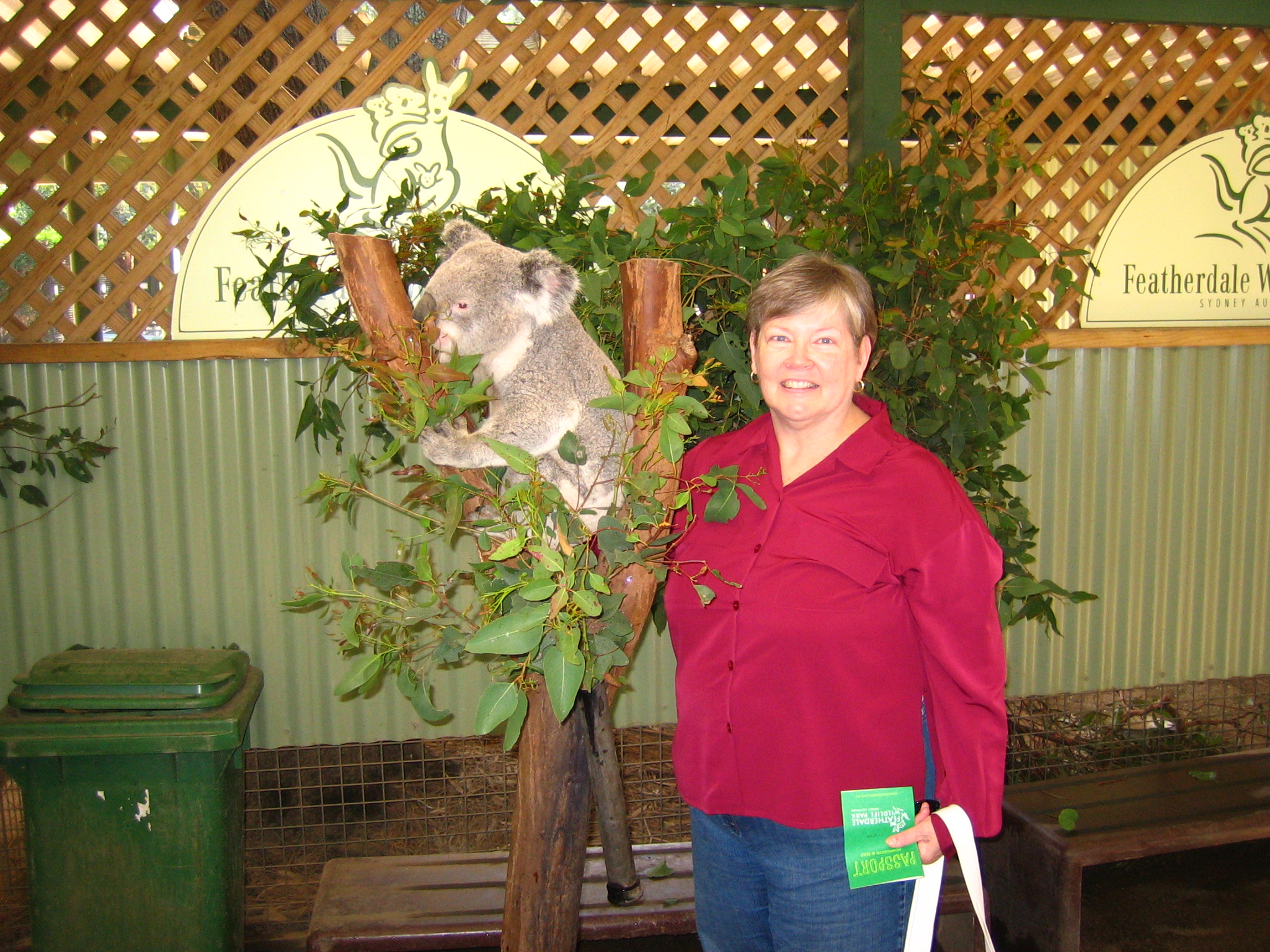 Koala and Pal Betty