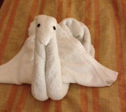 Towel - Sea Monster